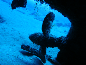 diving the temple hall lanzarote